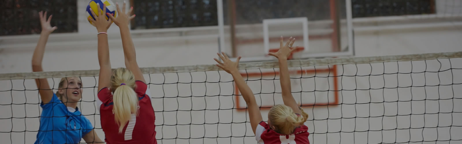 volleyball-page-banner-img